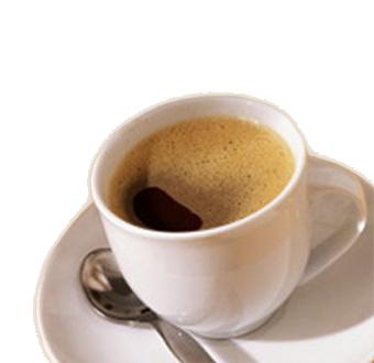 menyimpan kopi luwak