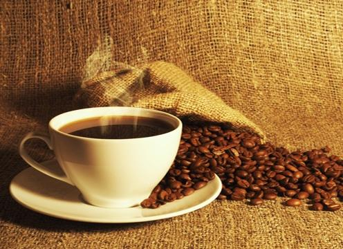 kopi gourmet