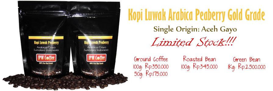 kualitas kopi luwak