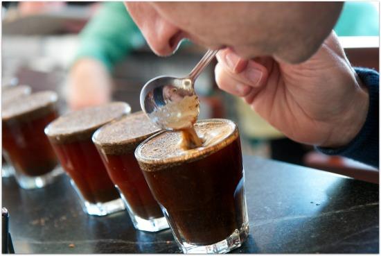 citarasa kopi luwak
