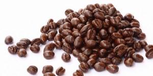 kopi luwak lanang