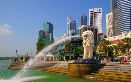 kopi luwak singapore