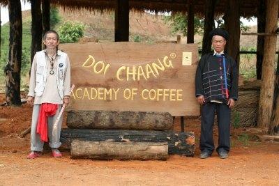 kopi luwak doi chaang